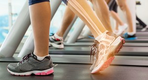 Sports-Medicine-Web